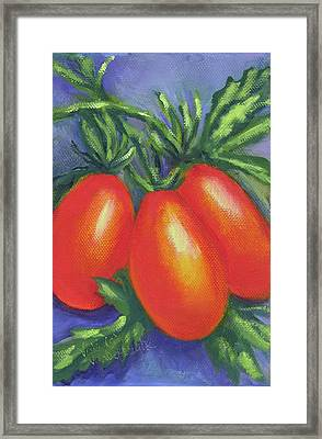 Tomato Seed Packet Framed Print