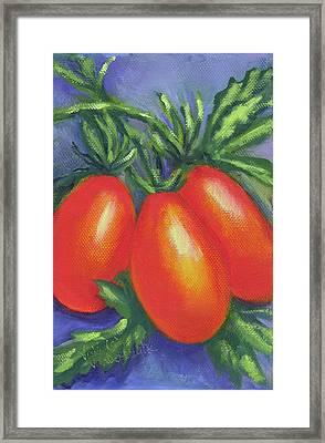 Tomato Roma Framed Print