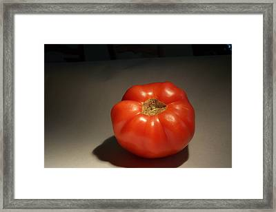 Tomato Still Life Framed Print by Bryan Knox