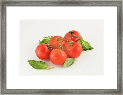 Tomatoes And Basil Framed Print