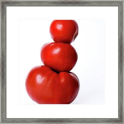 Tomatoes Framed Print by Bernard Jaubert