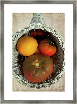 Framed Print featuring the photograph Tomatoes In A Horn Of Plenty Basket 2 by Dan Carmichael