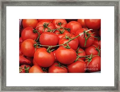 Tomatoes Framed Print by Jelena Jovanovic