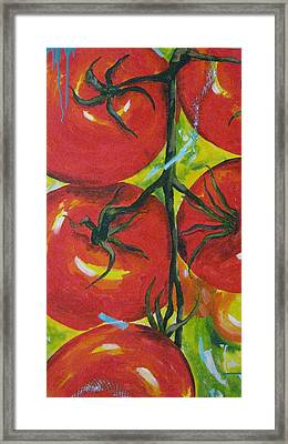 Tomatoes Framed Print by Terri Rodstrom