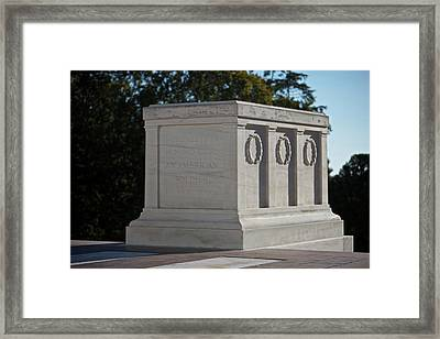 Tomb Of The Unknown Soldier, Arlington Framed Print by Terry Moore