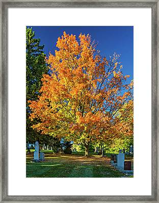 Tomb With A View Framed Print