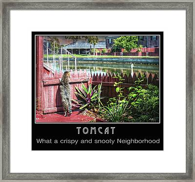 Framed Print featuring the photograph Tomcat Breakfast by Hanny Heim