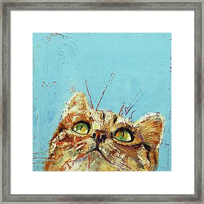 Tomcat Framed Print by Michael Creese