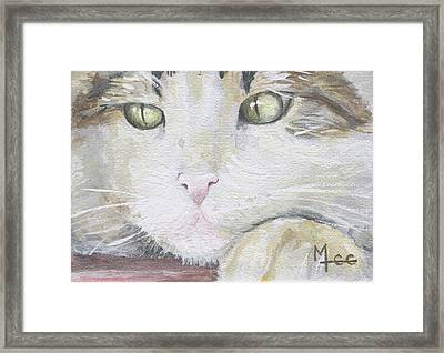 Tommy Framed Print by Mary-Lee Sanders