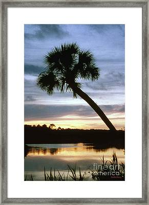 Tomoka River Sunset Framed Print