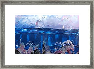 Toms Sail Framed Print by Danita Cole