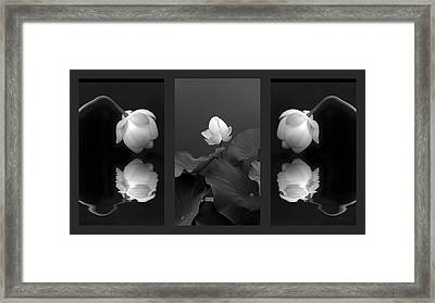 Tonal Study Triptych Framed Print