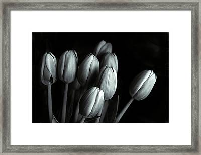 Framed Print featuring the photograph Tonal Tulips by Jessica Jenney