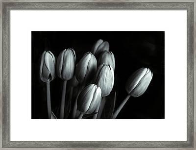 Tonal Tulips Framed Print