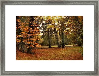 Tones Of Autumn Framed Print by Jessica Jenney