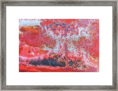 Tonopah Rust Iv Framed Print by Christian Heeb