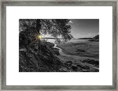 Tonquin Beach Sun Rays Framed Print by Mark Kiver