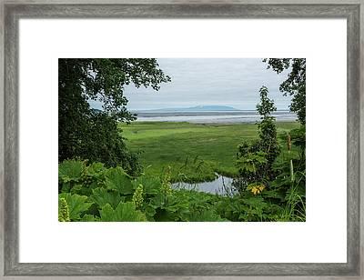 Tony Knowles Coastal Trail Framed Print