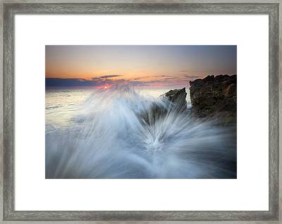 Too Close For Comfort Framed Print