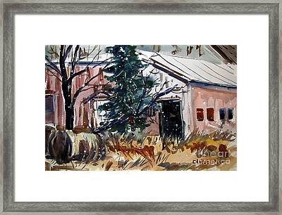 Too Late To Move Hay Framed Print