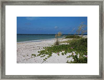 Framed Print featuring the photograph Too Much Space Between Us by Michiale Schneider