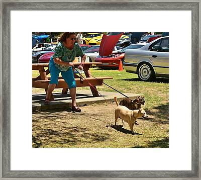 Too Much To Handle Framed Print by Linda Brody
