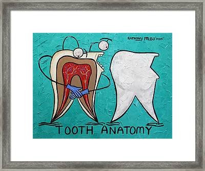 Tooth Anatomy Framed Print by Anthony Falbo
