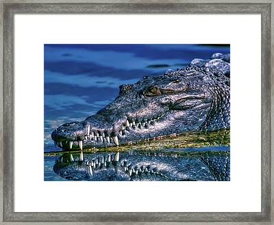 Toothy Grin Framed Print by Pedro Lastra
