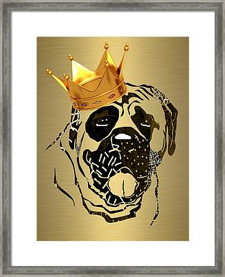 Top Dog Collection Framed Print