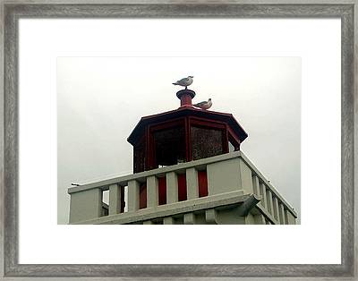 Top Of The Light Framed Print by Mary Haber