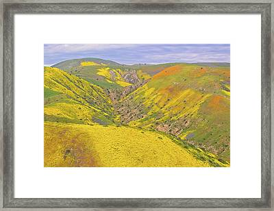 Framed Print featuring the photograph Top Of The Temblor Range by Marc Crumpler