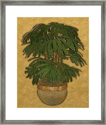 Topiary 4 Framed Print by Carol Peck