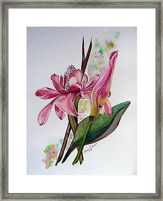 Torch Ginger  Lily Framed Print by Karin  Dawn Kelshall- Best