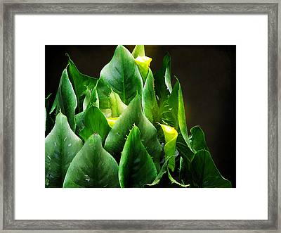 Torches 2 Framed Print by Michael Taggart II