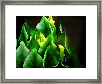 Torches 3 Framed Print by Michael Taggart II