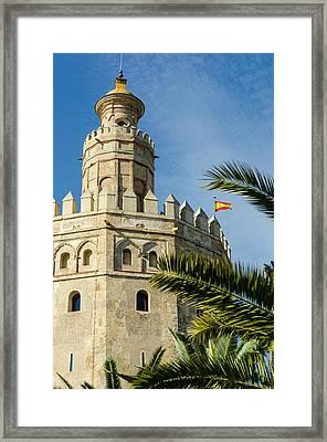 Torre Del Oro - Seville - Detail  Framed Print