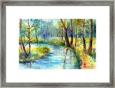 Torrent's Whisper Framed Print