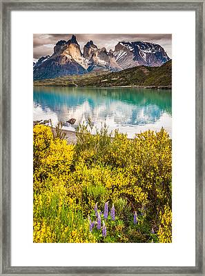 Torres Del Paine Reflection - Patagonia Photograph Framed Print