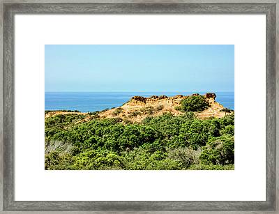 Torrey Pines California - Chaparral On The Coastal Cliffs Framed Print
