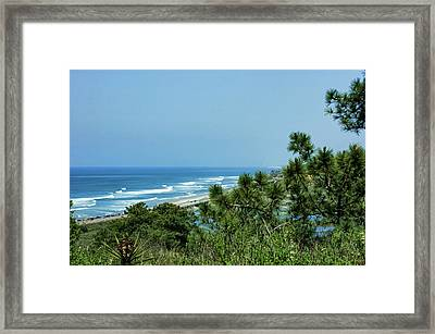 Torrey Pines - The Beach And The Lagoon Through The Trees Framed Print by Georgia Mizuleva