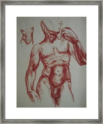 Torso Of  Michelangelo   David  Framed Print by Chris  Riley