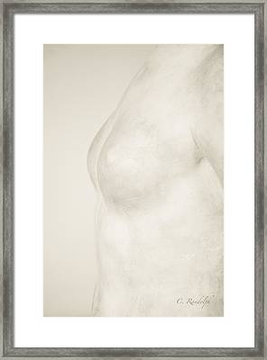 Torso Suggested Framed Print
