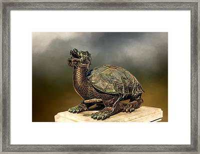 Tortoise Framed Print by Maria Coulson