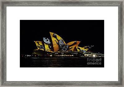 Tortoise Sails - Sydney Vivid Fesatival Framed Print by Bryan Freeman