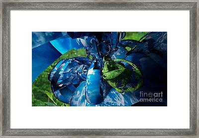 Torus Framed Print