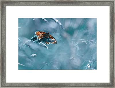 Total Kheops Framed Print by Fabien Bravin