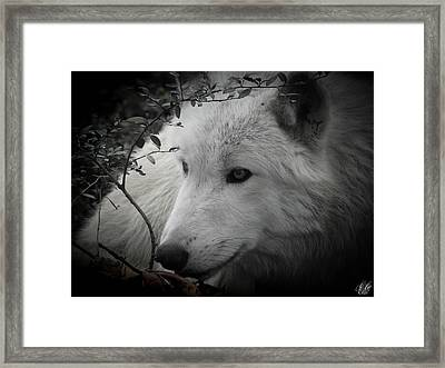 Totem, No. 24 Framed Print