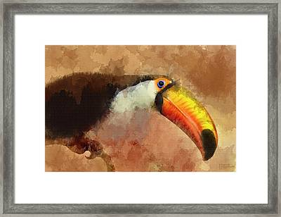 Toucan Large Canvas Art, Canvas Print, Large Art, Large Wall Decor, Home Decor, Wall Art Framed Print by David Millenheft