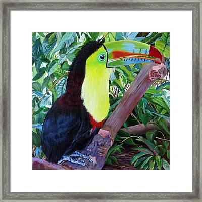 Toucan Portrait 2 Framed Print by Marilyn McNish