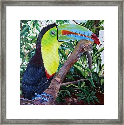 Toucan Portrait Framed Print
